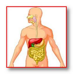 Лечение рака пищевода