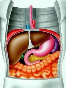 Лечение после удаления желчного пузыря