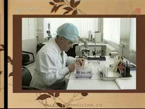 Микроэлементы. Значение микроэлементов для жизнедеятельности организма