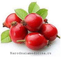Плоды шиповника для лечения паротита