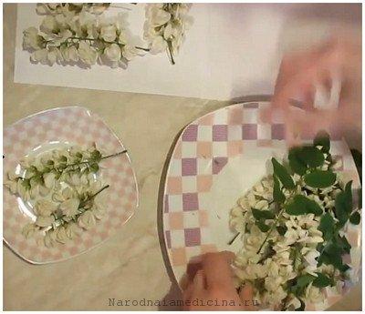 цветы белой акации в народной медицине