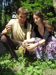 Польза трав