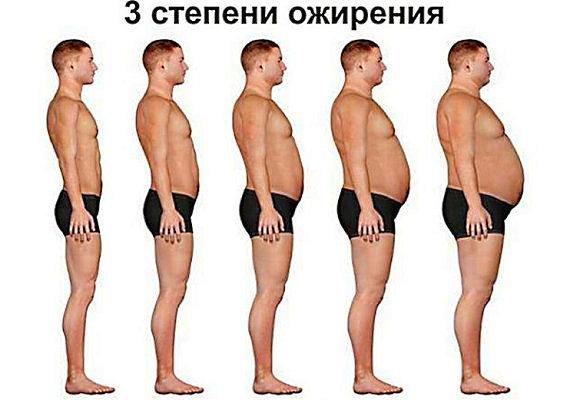 Достижение и поддержание здорового веса