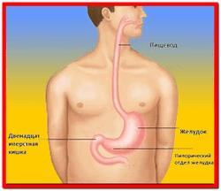 Дуоденит симптомы лечение