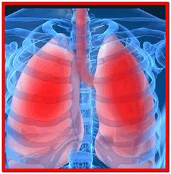 Фиброзирующий альвеолит лечение