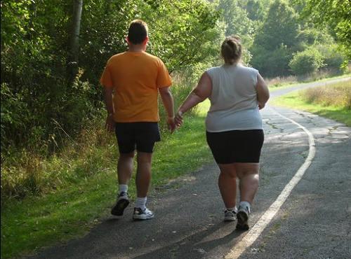 Лечение ожирения в домашних условиях народными средствами