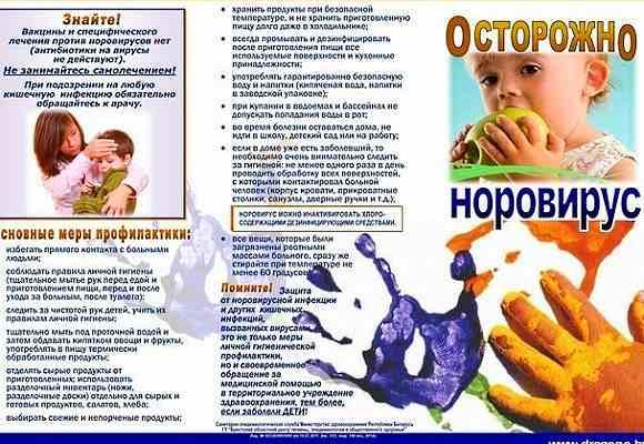 Норовирусная инфекция. Симптомы и лечение норовирусной инфекции
