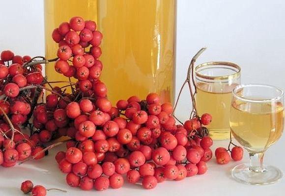 Смесь сока рябины с натуральным медом