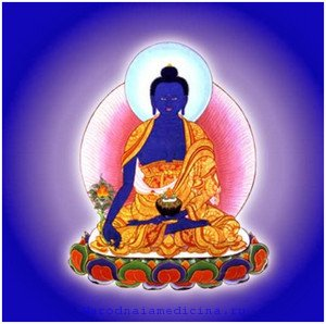 Здоровье человека и животные. Тибетская книга Авиценны