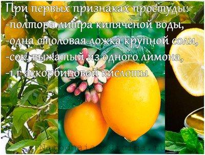 При простуде помогает лимон