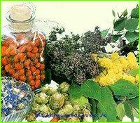 Травы для лечения фарингита